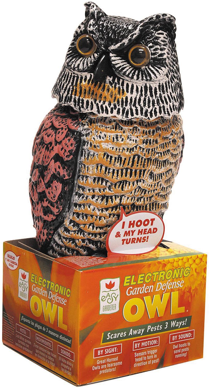 electronic-owl.jpg